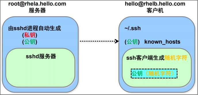 21_linux笔记-ssh服务